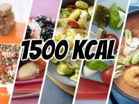 1500 Kcal-Tag-Blitzrezepte