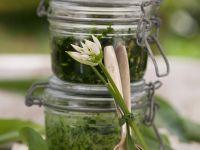 Bärlauchpesto mit Brennnessel und Sonnnenblumenkernen