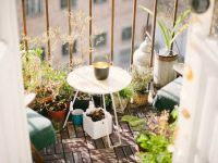 Balkon bepflanzen
