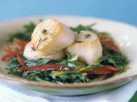 Blattsalat mit gegrillten Jakobsmuscheln