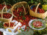 Cranberry-Torteletts