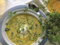 Cremige Mangoldsuppe mit verlorenem Ei und Kerbel