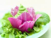 Erbsenpüree mit Salat