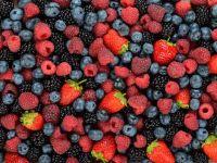Viele verschiedene appetitlich aussehende Beeren