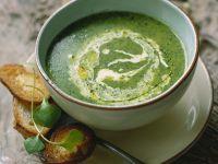 Grüne Suppe mit Kresse