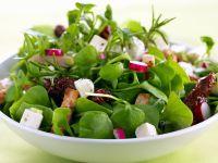Grüner Salat mit getrockneten Tomaten und Radieschen