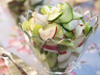 Gurkensalat mit Radieschen