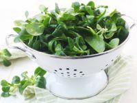 Das macht Feldsalat gesund
