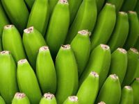 Darf man eine grüne Banane essen?
