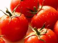 Warum Tomaten gesund sind