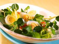 Kressesalat mit Eiern