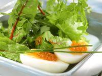 Mangoldsalat mit Ei