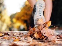 Sportarten aktivieren den Stoffwechsel