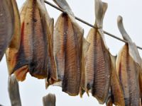 Warenkunde Stockfisch