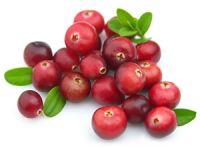 Frische Cranberries enthalten besonders viel Vitamin A