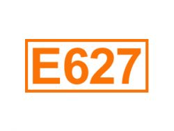 E 627 ein Geschmacksverstärker