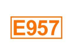 E 957 ein Geschmacksverstärker