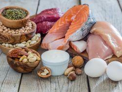 Eiweiß - Protein