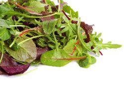 Fertigsalate im Check © kiboka - Fotolia.com