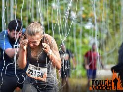 Electroshocktherapy bei Toughmudder