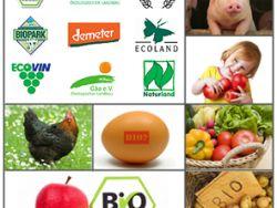 Bio-Boom: Immer mehr Menschen kaufen Bio