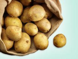 Warum die Kartoffel gesund ist.