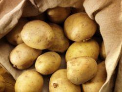 Jeden Tag Kartoffeln?