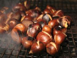 Sind Maronen eine fettarme Alternative zu Nüssen?