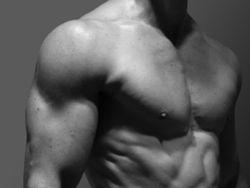 Sind Muskeln Fatburner?