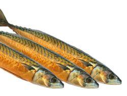Ist Räucherfisch so gesund wie frischer Fisch?