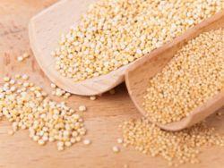 Amaranth und Quinoa: gesundes Scheingetreide