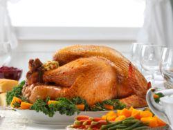 Eine Thanksgiving-Pute