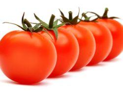 Was man über Tomaten wissen sollte.
