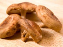 Shiitake-Pilze stammen aus Asien.