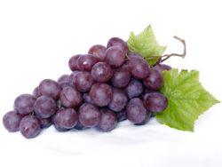 Warum Weintrauben gesund sind.