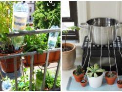 Pflanzen bewässern