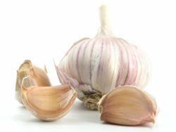Was man über Knoblauch wissen sollte