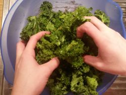 Kale Chips Marinade
