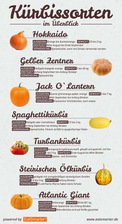 Kürbissorten und Verwendung - Infografik
