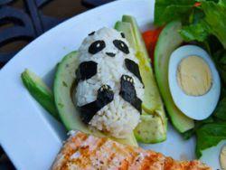 Panda Sushi einfach