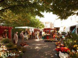 Wochenmarkt Hannover
