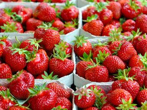 Erdbeeren gesund