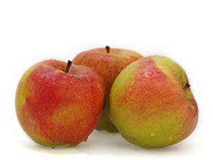 Apfel Warenkunde