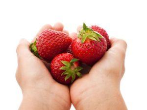 Gepflückte Erdbeeren