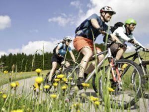 Sport im Frühling