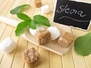 Ist Stevia gesund