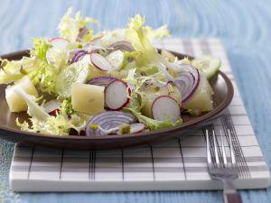 Radieschen-Sprossen-Salat