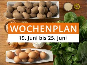 Wochenplan KW 25