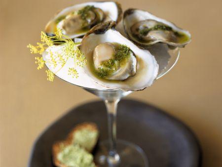 Rezept: Austern mit Pesto