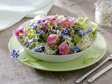 Blattsalat mit Sprossen und essbaren Blüten